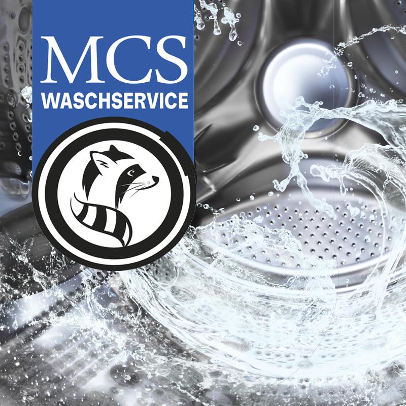 B2B Waschservice von MCS-Augustin